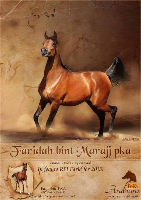 Faridah Tutto Arabi-001